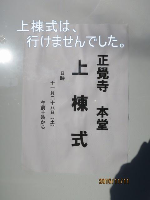 01300.jpg
