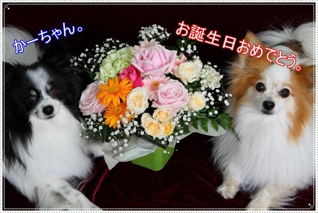 2IMG_3886.jpg