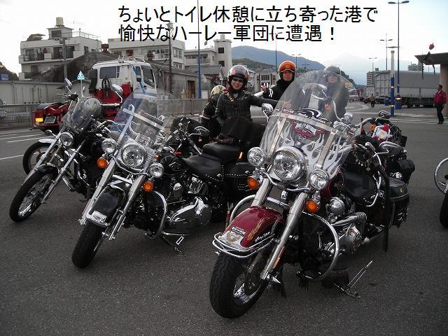 DSCN7409.jpg
