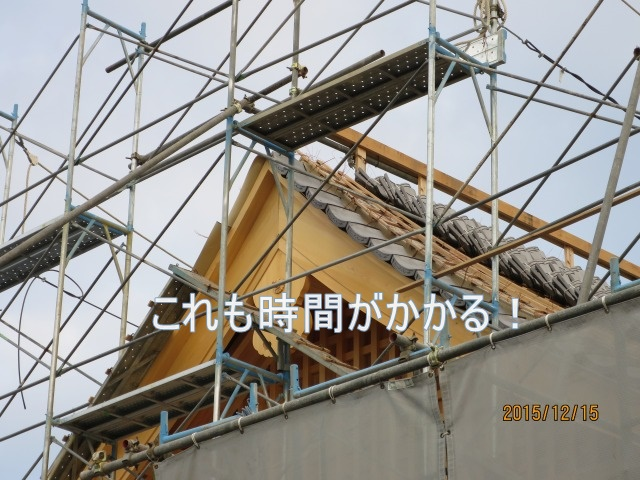 IMG_3251.jpg