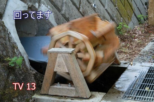 IMG_4683.jpg