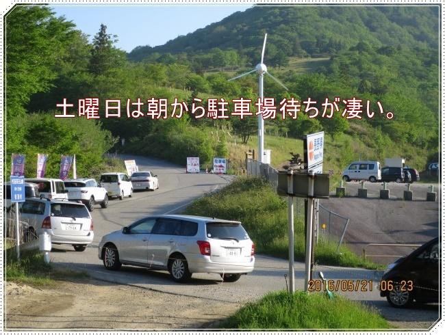 IMG_7671.jpg