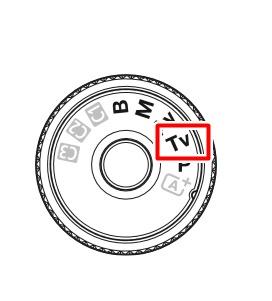 TVVVC.jpg