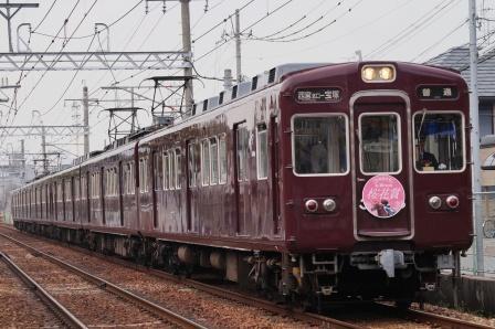 桜花2015
