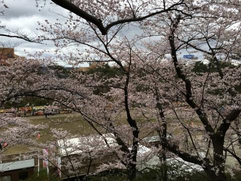 2016-04-19_11-01-14.jpg