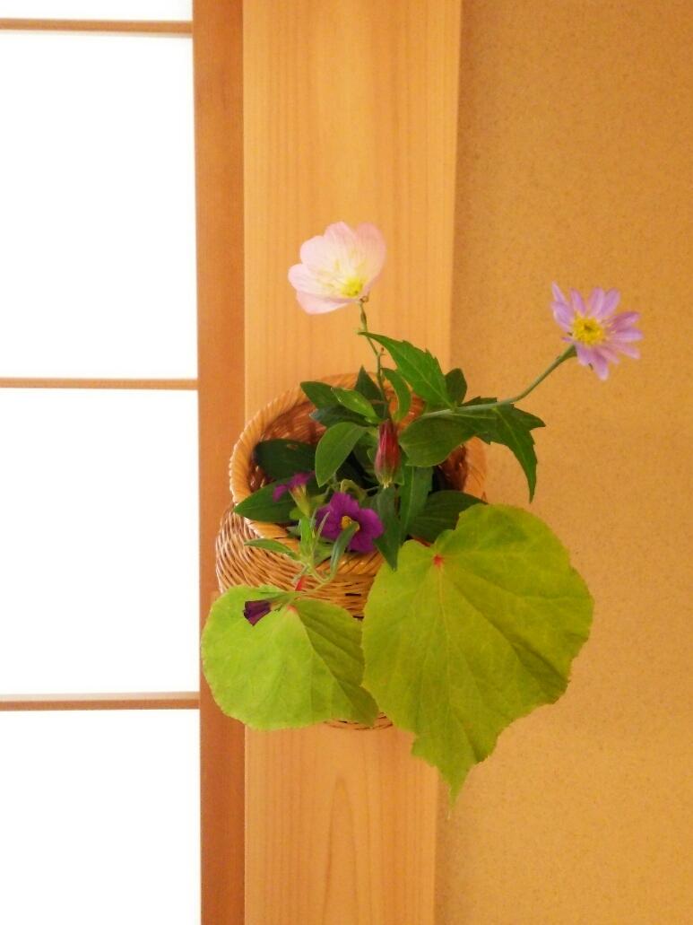 6月のお花