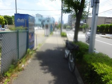 mini_DSC09964.jpg