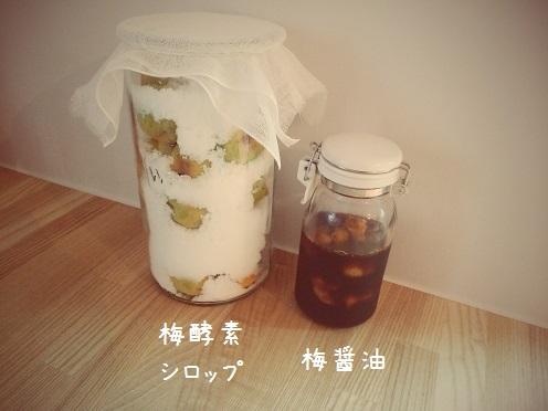 梅醤油&酵素シロップ