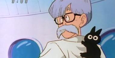 ブリーフ博士のネコ
