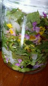 野草酵素ジュース(12種類野草)