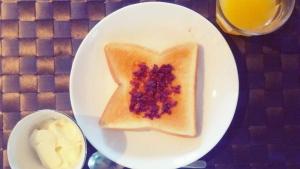 ヘビイチゴの朝ごはん