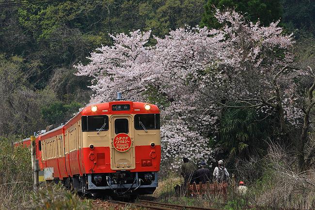 津山線ノスタルジー