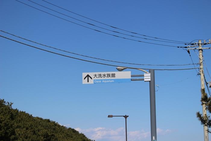 IMG_2796.jpg