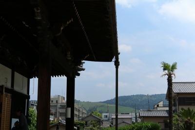 称名寺から見える若草山