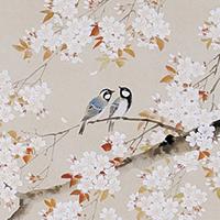 桜の名所「清洲公園と五条川の桜並木」
