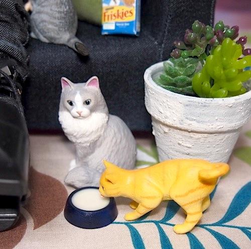 20160416cats02.jpg