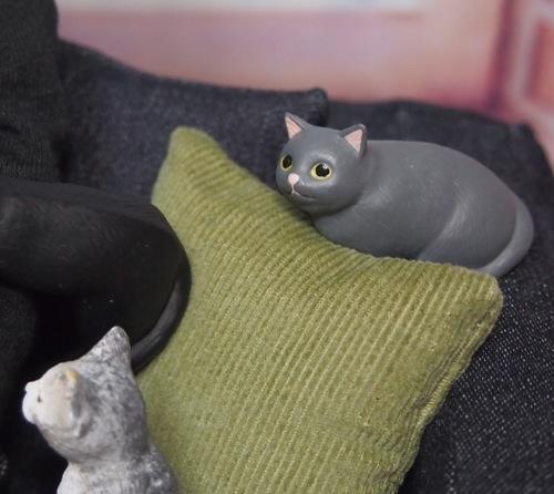 20160416cats08.jpg