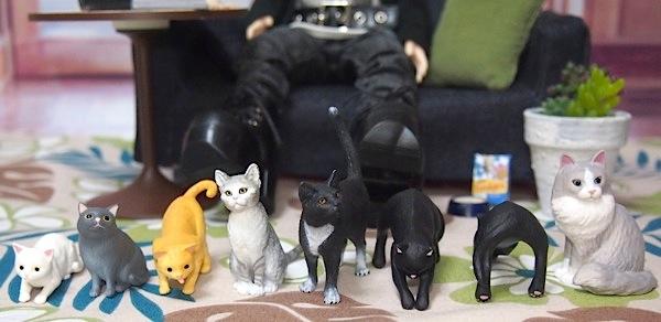20160416cats12.jpg