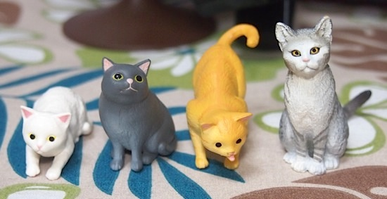 20160416cats13.jpg