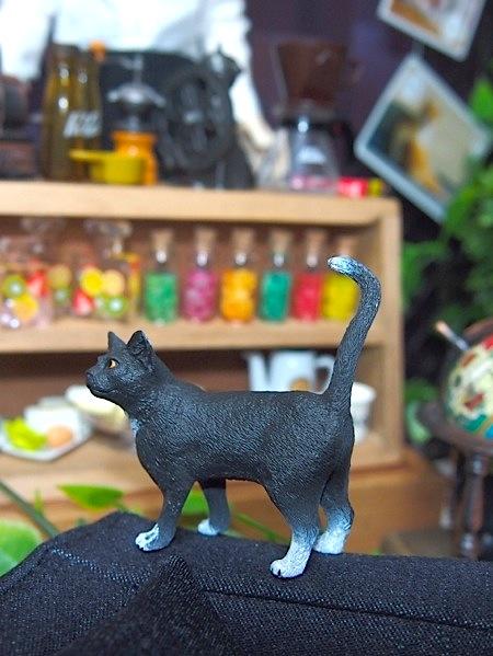 20160525-CatCafe01.jpg