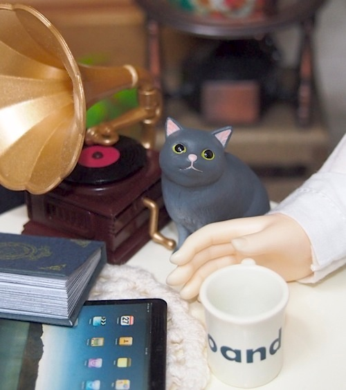 20160525-CatCafe11.jpg