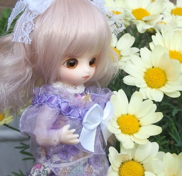Brownie-nene0014.jpg