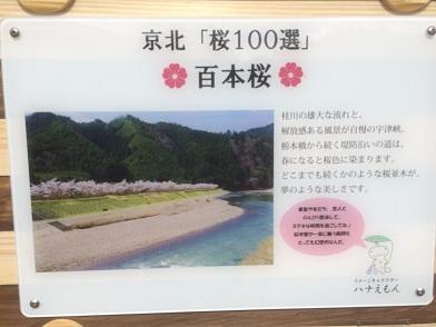 160402IMG_1004.jpg