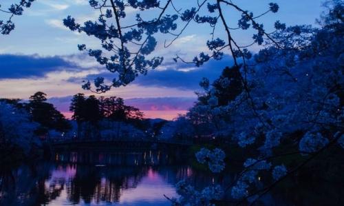 高田公園夕焼け