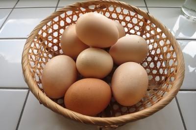 おいしい卵