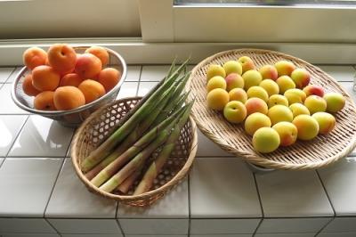 季節の野菜、果物