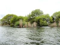 20160418琵琶湖03