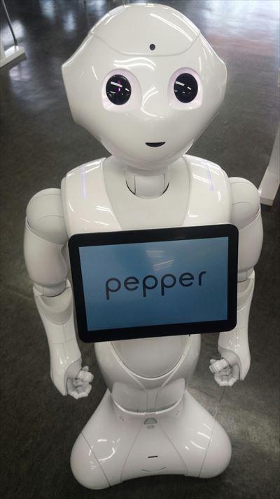 pepper_7916_R.jpg