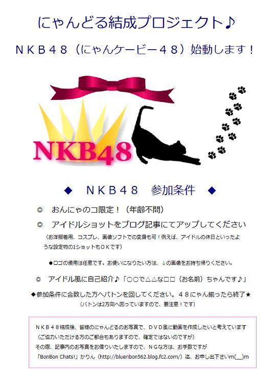 NKB概要-1