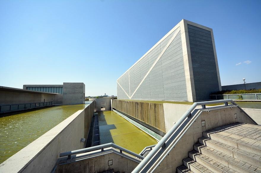 新・狭山池博物館 (1)