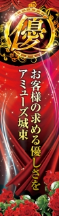 141107_Ajoto_pop_side.jpg