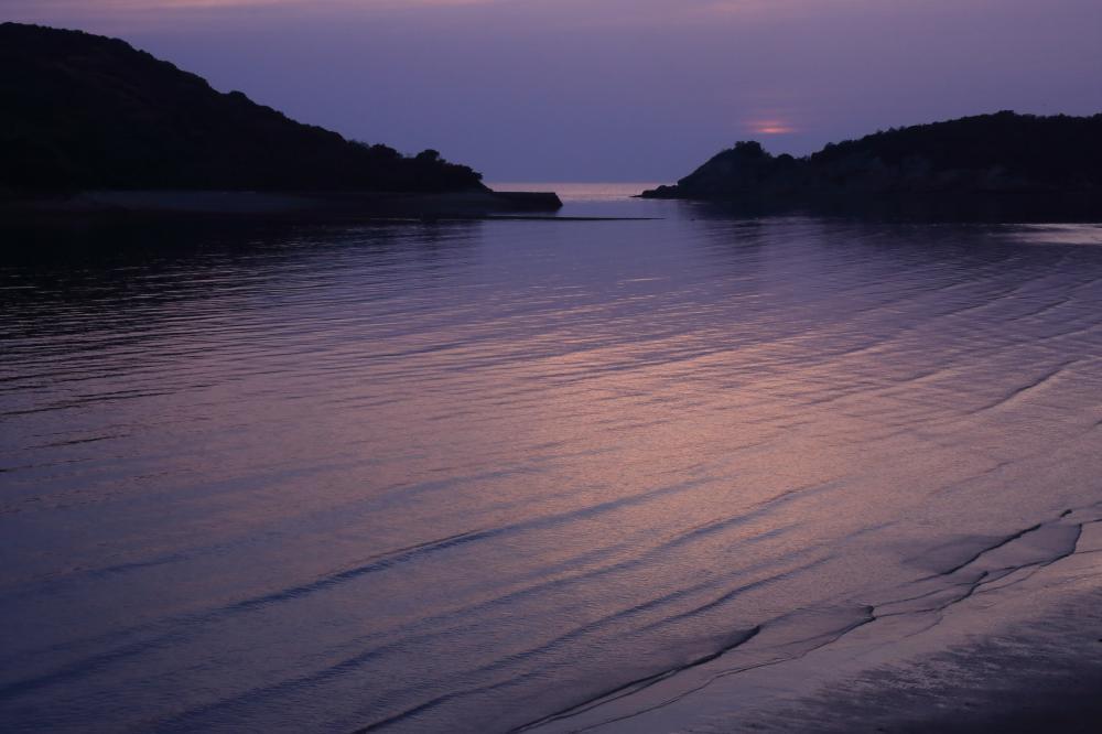 薄紫の夕暮れ