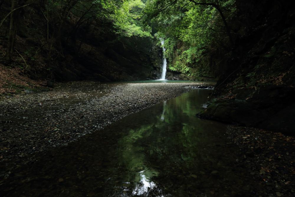 深緑の森の滝