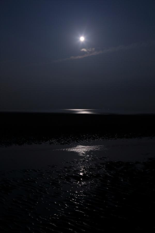 月明かりの浜辺