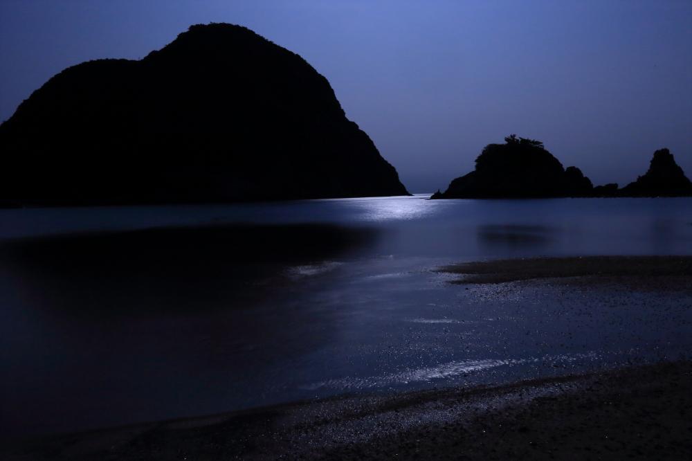 揺れる月光