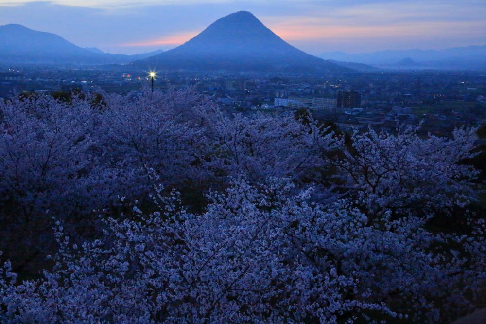 夜明けの丸亀平野