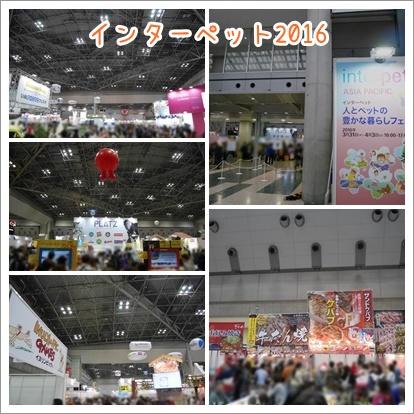20160406-14.jpg