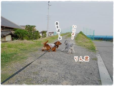 20160529-3.jpg