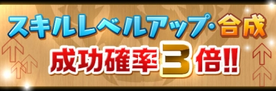 skill_seikou3x_2016070115270278c.jpg