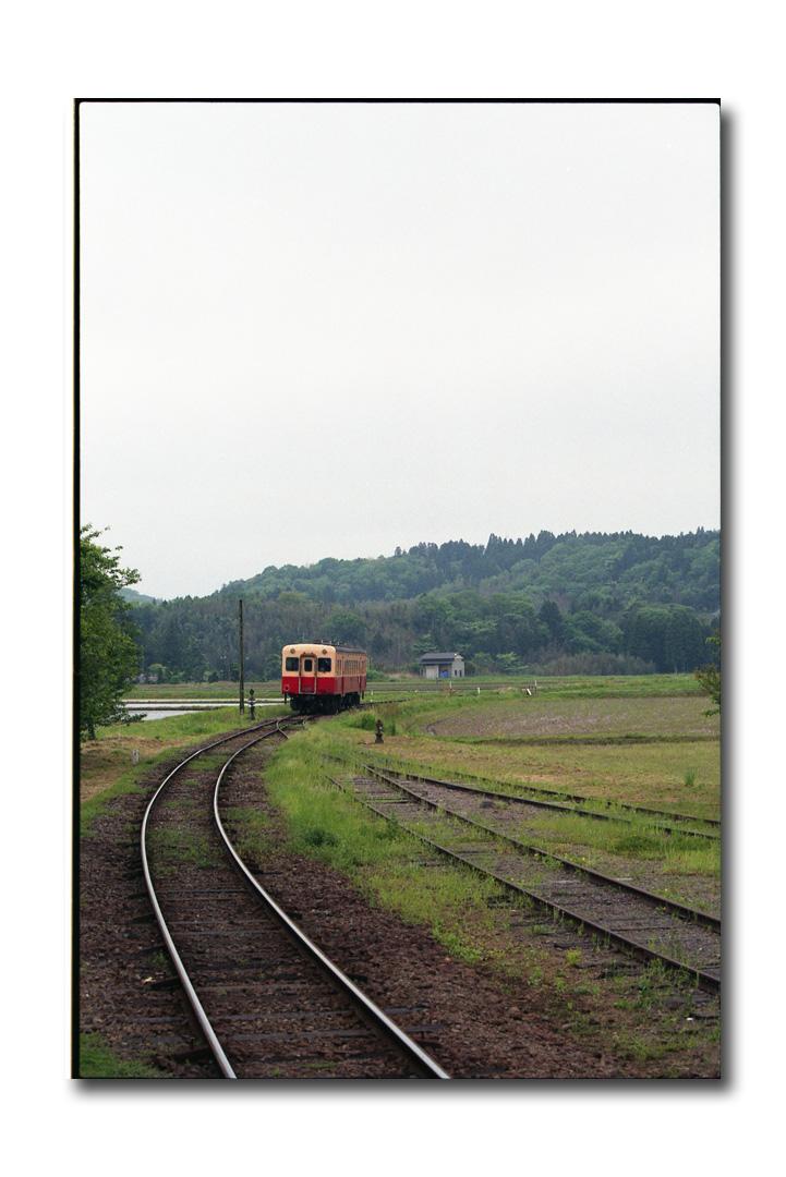 img369.jpg