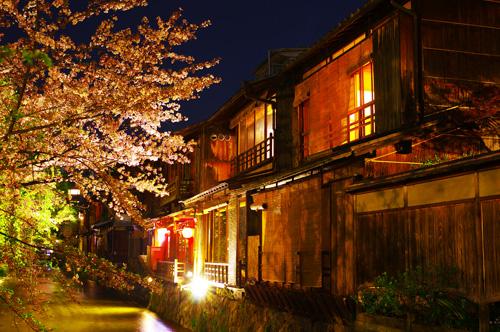 祇園白川と桜の夜景