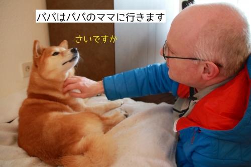 パパはパパのママに行きます