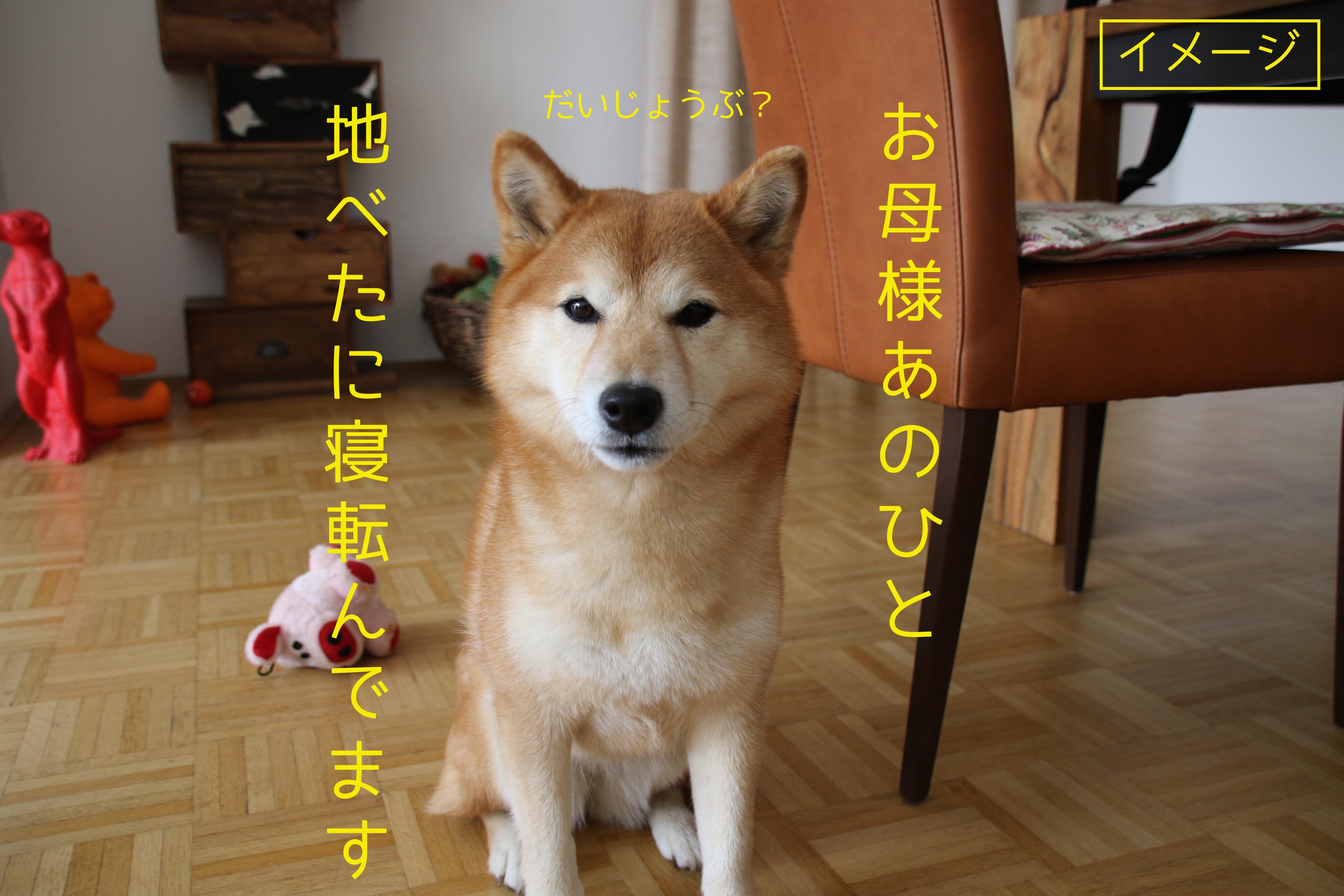 20160428034925ca7.jpeg