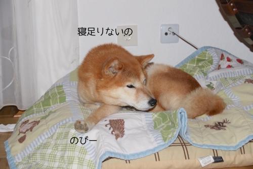 寝足りない起きてきたアスカ