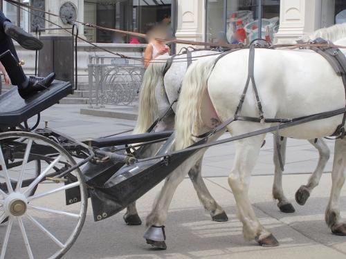ウィーン馬車