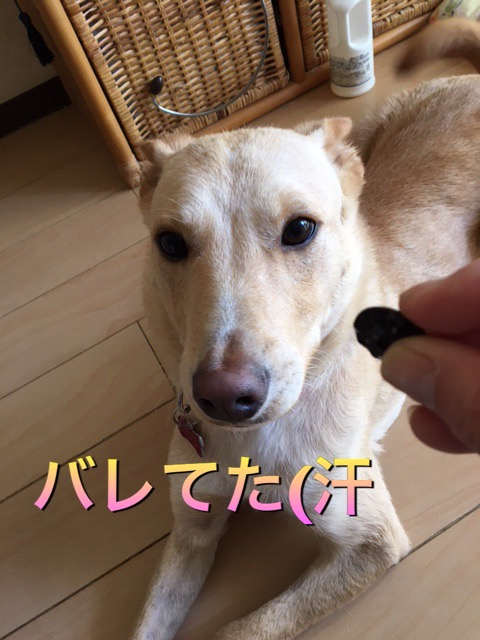 (9)1.jpg